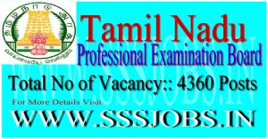 Tamil Nadu PEB TNDGE Recruitment Notification 2015 for 4360 Posts