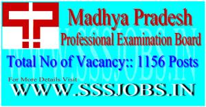 Madhya Pradesh Professional Examination Board Notification 2015 for 1156 Posts