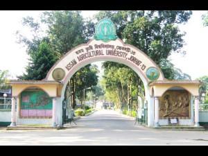Assam Agricultural University Recruitment 2015