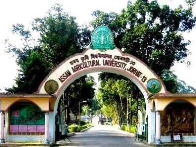 Assam AAU Recruitment 2016